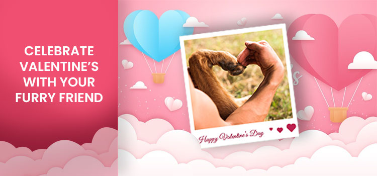 Celebrate Valentine's with your Furry Friend